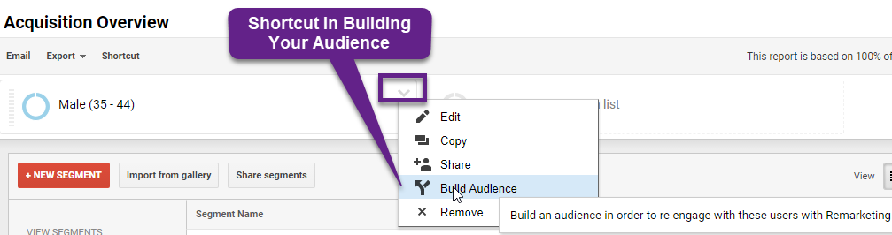 Build Your Audience Directly from Segment