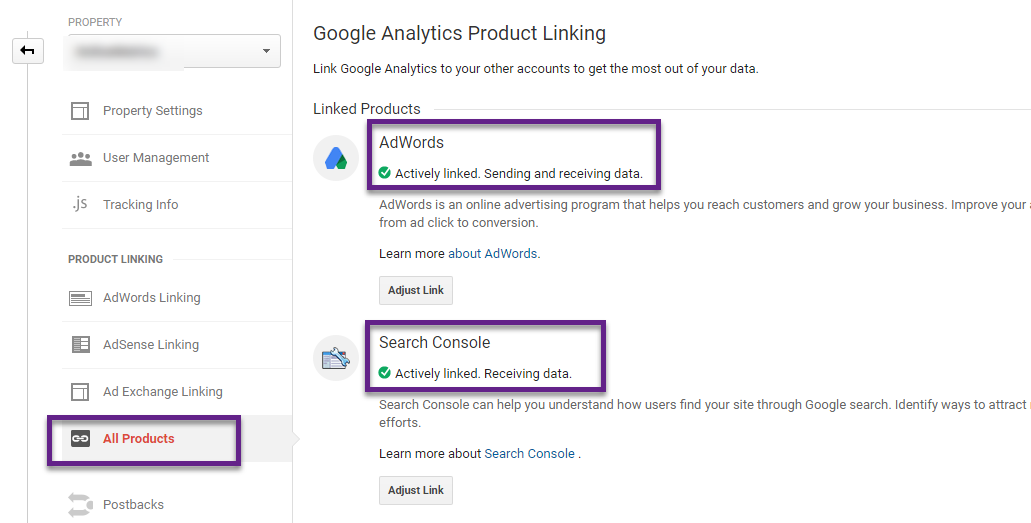 Feature - Google Analytics Product Linking